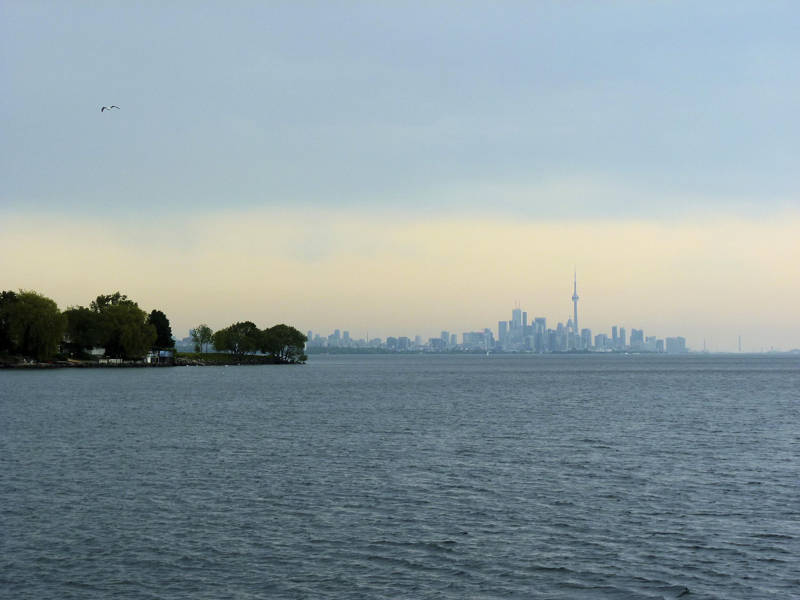 Вид на Торонто с набережного кампуса