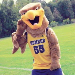 humber-hawk