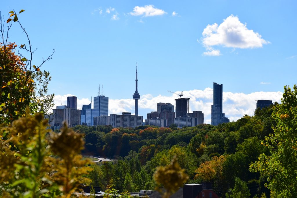Toronto, Evergreen Brick Works/Photo by Sveta Soloveva